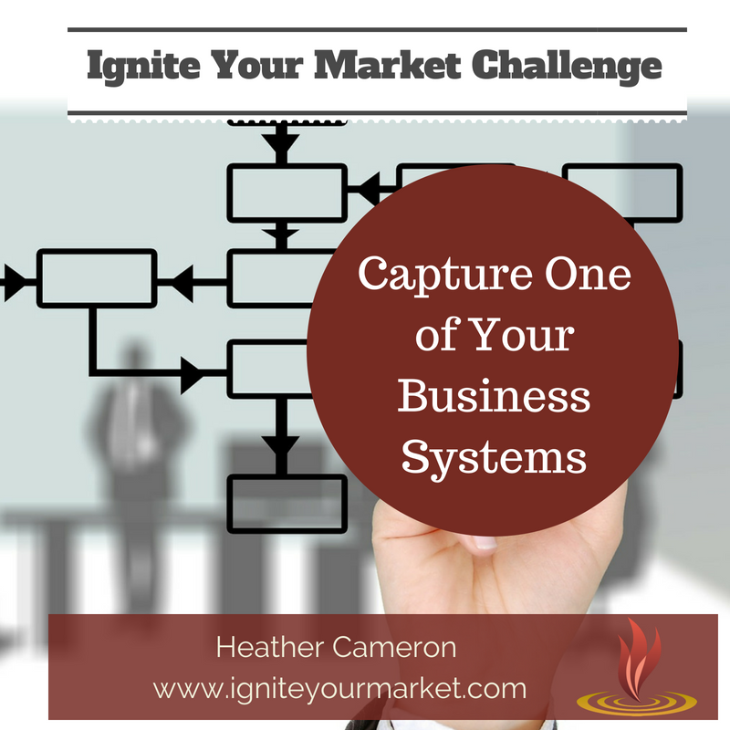 Ignite Your Market Challenge: Capture One of Your Business Systems