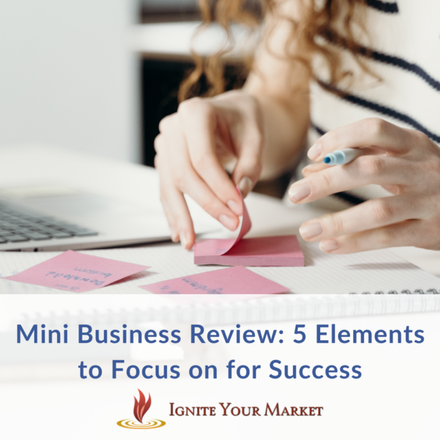 Mini Business Review